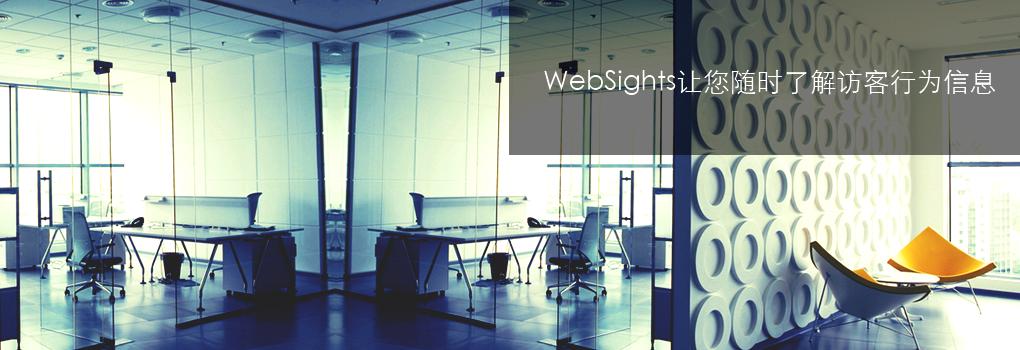 WebSights Visitor